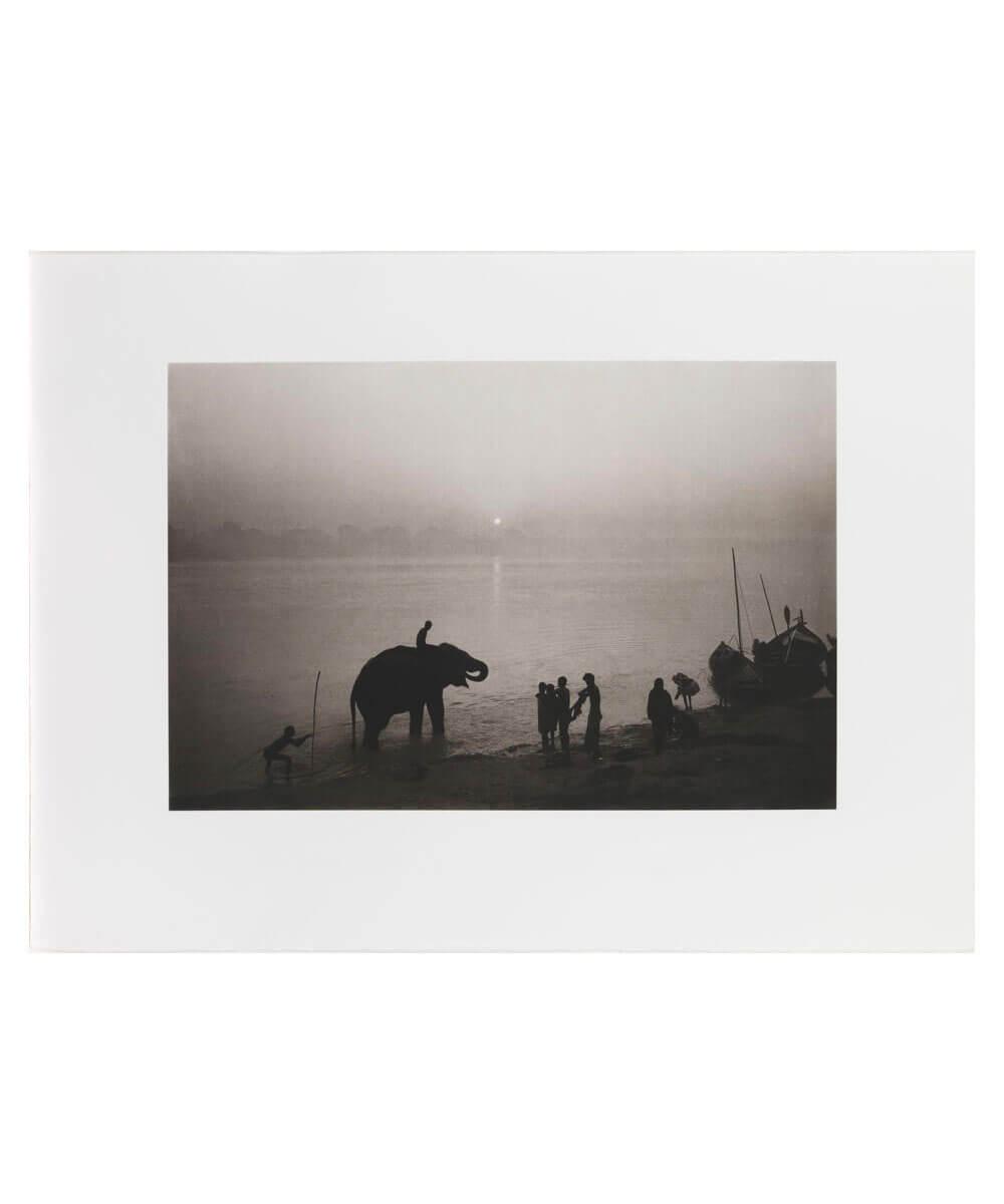 Along the Ganges during the Sonepur Mela Festival