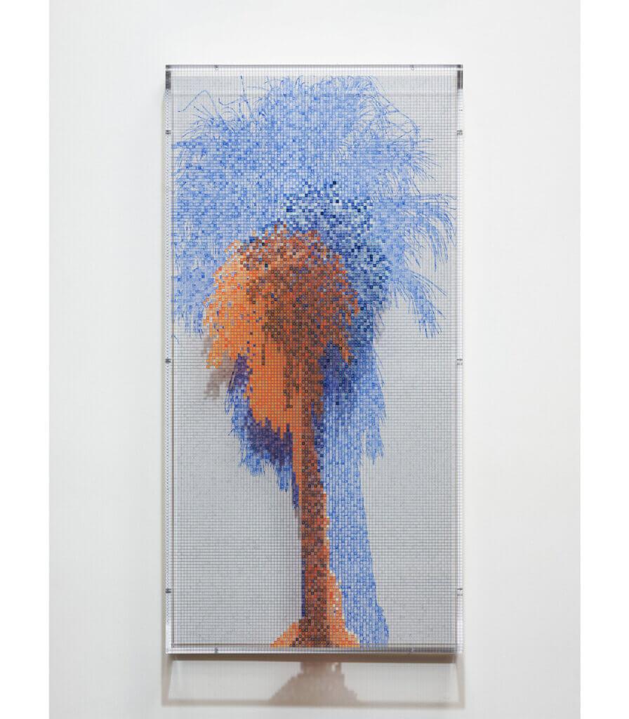 Numbers and Trees: Palm Canyon, Palm Trees Series 3, Tree #2, Arizona
